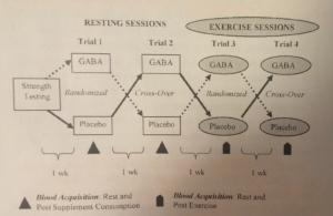 Figure 1 gaba article